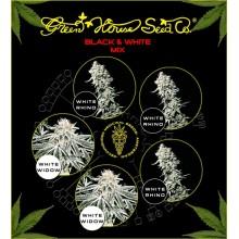nasiona marihuany Mix - Black & White