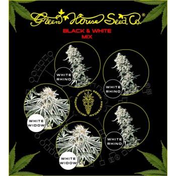 http://grubylolek.pl/332-thickbox_atch/nasiona-marihuany-mix-black-white.jpg