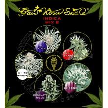 nasiona marihuany Mix - Indica E