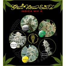 nasiona marihuany Mix - Indica H