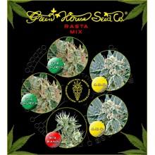 nasiona marihuany Mix - Rasta