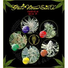 nasiona marihuany Mix - Sativa/Indica F