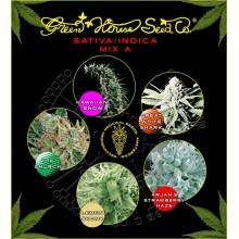 nasiona marihuany Mix - Sativa/Indica A