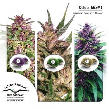 http://grubylolek.pl/704-thickbox_atch/nasiona-marihuany-mix-1.jpg