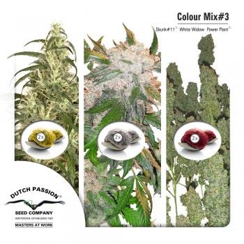 http://grubylolek.pl/712-thickbox_atch/nasiona-marihuany-mix-3.jpg