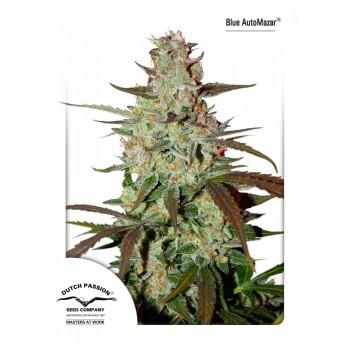 http://grubylolek.pl/898-thickbox_atch/nasiona-marihuany-blue-automazar.jpg