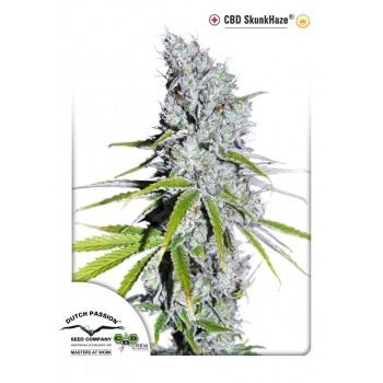 http://grubylolek.pl/902-thickbox_atch/nasiona-marihuany-cbd-skunk-haze.jpg