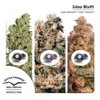 http://grubylolek.pl/910-thickbox_atch/nasiona-marihuany-mix-5.jpg