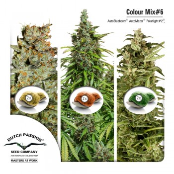 http://grubylolek.pl/914-thickbox_atch/nasiona-marihuany-mix-6-autofem.jpg