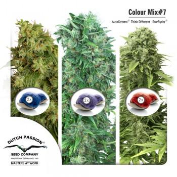 http://grubylolek.pl/917-thickbox_atch/nasiona-marihuany-mix-7-autofem.jpg